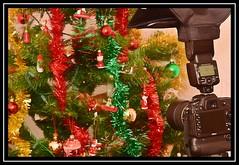 """THE MAKING OF """"Season's Reflections..."""" (NikonShutterBug1) Tags: macro closeup nikond7100 spe smartphotoeditor christmasdecorations christmastree tamron70300mm christmas"""