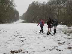 UK - Hertfordshire - Near Little Gaddesden - Walking along Monument Drive on Ashridge Estate in the snow (JulesFoto) Tags: uk england hertfordshire ramblers capitalwalkers littlegaddesden walking snow ashridgeestate