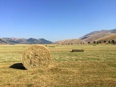 Roccaraso Piana delle cinquemiglia (15) (ottaviobeccegato) Tags: agricoltura campi montagne prati
