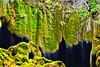 Yerköprü Waterfall (cengizskpl) Tags: turkey akdeniz mersin mut yerköprüşelalesi waterfall water green moss nature grouptripod