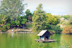 Lago parque de la Paloma (Nati Almao1) Tags: