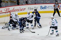 San Jose Barracuda vs Manitoba Moose (manitoba_moose) Tags: ahl winnipeg manitoba canada can