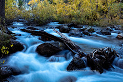 Autumn on Bishop Creek (chasingthelight10) Tags: events photography travel landscapes canyons creeks forests foliage nature mountains places california bishopcreekcanyon easternsierranevada sierranevada bishopcreek northlake sabrinalake southlake