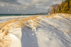 Winter Sun (Aaron Springer) Tags: michigan northernmichigan lakemichigan thegreatlakes shoreline lakeshore snow dune dunegrass trees clouds ice water sunlit winter february outdoor nature landscape