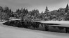 Winter (Tore Thiis Fjeld) Tags: norway oslo nordmarka forest trees water snow winter reflection outdoors nature river mono bw blackwhite panorama untouched sonya6000
