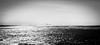 View on Scheveningen (http://www.paradoxdesign.nl) Tags: scheveningen noordwijk aan zee beach horizon view black white seascape waves crashing surf spray north sea noordzee den haag hague zuid holland netherlands water