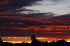 Sunset 12 31 17 #06 (Az Skies Photography) Tags: december 31 2017 december312017 12311712312017 new years eve newyearseve sky rio rico arizona az riorico rioricoaz arizonasky canon eos 80d canoneos80d eos80d canon80d sun set sunset dusk twilight nightfall cloud clouds skyline skyscape arizonasunset arizonaskyline arizonaskyscape newyearsevesunset final last finalsunset2017 red orange yellow gold golden salmon black