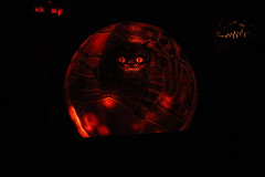 IMG_6453 (comtrag) Tags: jackolanterns rogerwilliamszoo rhodeisland halloween pumpkins pumpkincarving