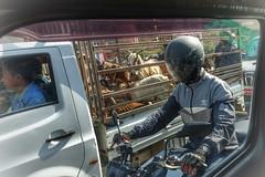 Lane splitting (posterboy2007) Tags: traffic kathmandu nepal street lanesplitting motocycle rider goats truck sony