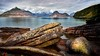 Elgol Beach Rocks (Dave Massey Photography) Tags: isleofskye scotland elgol