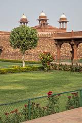 171103_036 (123_456) Tags: india fatehpur sikri shah akbar uttar pradesh great emperor mughal