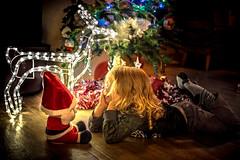 Père Noël, regarde comme je suis sage ! (virginiefort) Tags: 50mm d600 enfant children christmas claus kid nikon noel perenoel reindeer renne santa