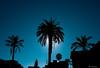 palermo (fabiocalcaterra) Tags: palermo controluce contrasto sole sky fotografia fujifilmxt20 fuji