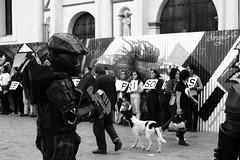 SPARTAN (KIN RYU) Tags: spartan 117 sancristobal chiapas mexico canon eos t6