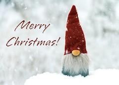 Merry Christmas! (Karen_Chappell) Tags: christmas noel holiday xmas red white snow snowing snowy stilllife gnome santa merrychristmas jultomten sweden souvenir decor decoration ornament