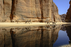 Escena sahariana. (Victoria.....a secas.) Tags: africa sáhara chad reflejos reflections