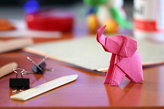 Luchy Elephant ( origami ) (Adri 79) Tags: adrianodavanzo origami paper elephant poop hirookamo canon7dmarkii sigma105mmf28exdgoshsm