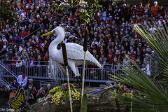 Egret (Thad Zajdowicz) Tags: zajdowicz pasadena california roseparade 2018 usa outdoor outside canon eos 5dmarkiii 5d3 digital dslr color colour festive availablelight lightroom ef70200mmf4lisusm bird egret flowers white green people float parade animal spectators