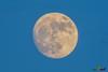 A-LUR_3268 (OrNeSsInA) Tags: luna bigluna moon bigmoon trasimeno umbria italia lucarosi