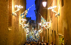 Onda (Wave) Celebrates Winning The Palio, Siena, Tuscany, Italy (alextsui86) Tags: siena tuscany palio italy pagentry tradition civic pride rivalry horse race medieval piazza del campo contrada onda wave win winners celebration