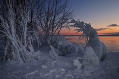 sunset, whitefish bay (twurdemann) Tags: encrusted fujixt1 groscap highway550 horizon ice icesculpture lakesuperior landscape nature neutraldensityfilter ontario princetownship scenic seascape shoreline sky stmarysriver sunset trees viveza water whitefishbay