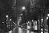 Av des Champs-Elysees, Arc de Triomphe (Earl Robicheaux Photography, LLC) Tags: worldregionscountries europe france paris 8tharrondissement avdeschampselysees arcdetriomphe avenuedenewyork avenuefranklindroosevelt placecharlesdegaulle jardindelanouvellefrance environment scenery land city citylights weather fog mist dimness moisture haze iledefrance fr