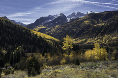 Slopes of Ragged Mountain (courtney_meier) Tags: colorado coloradorockies crystalriver engelmannspruce fall landscape piceaengelmannii populustremuloides raggedmountain raggedwilderness rockymountains southernrockies aspens autumn fallcolor mountains snow spruce