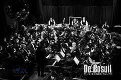 2017_01_07 Nieuwjaarsconcert St Antonius NJC_2889-Johan Horst-WEB
