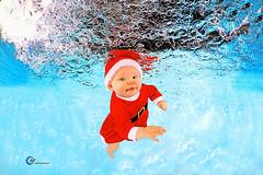 H2OFoto.de Babyschwimmen Unterwasserfotoshooting taken with SUBAL Underwater Camera Housings (Babyschwimmer) Tags: bad klosterlausnitz babyschwimmen santa claus weihnachtsmann unterwasser schwimmkurs anmeldung termin fotoshooting schwimmbad underwater fotograf hebamme kleinkinderschwimmen säugling therme berlin dresden leipzig oranienburg chemnitz bonn siegburg ibbenbühren halle suhl meisen radebeul radeburg pirna bautzen neustadt freiberg lausick hessen thüringen brandenburg sachsen bäderbetriebe stadtwerke physiotherapie magdeburg perleberg mv sangerhausen