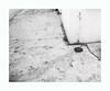 La cour en hiver (hélène chantemerle) Tags: cour sol robinet eau blanc bw blackandwhite yard ground faucet water white landscape winter