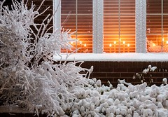 A Winter's Night (Karen_Chappell) Tags: snow candles window lights xmas holiday noel christmas house home night white orange