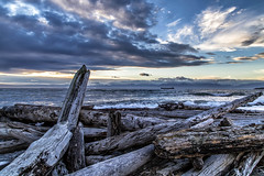 Logs (Paul Rioux) Tags: waterfront seashore seascape sea ocean water driftwood logs waves weather clouds prioux outdoor explored