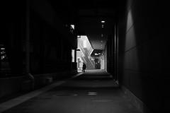 Coming back at home (parenthesedemparenthese@yahoo.com) Tags: dem bw backlight bag femme japan japon monochrome nb noiretblanc shopping silhouette street woman bags blackandwhite blancoynegro contrejour escalier hautcontraste highcontrast ruelle