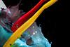 Test Nikon D850 (Antonio Iacobelli (Jacobson-2012)) Tags: 60mm nikkor d850 nikon bari watercolor highspeed splash colors acrylic