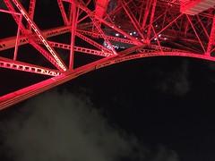Tokyo Tower at night (Hayashina) Tags: japan tokyo architecture red night tokyotower