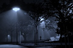 In the Park (petejam70) Tags: park urban night nature cyantone vancouvercanada mysterious