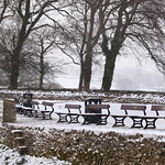 Frozen-seat? thumbnail