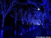 aonodokutsu001 (et_dslr_photo) Tags: xmas illumination 青の洞窟 shibuya yoyogi blueled night nightview nightshot hdr