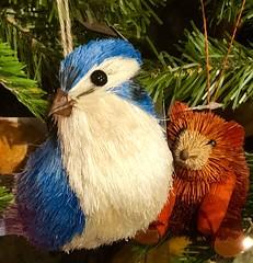 "It's Christmastime (EDWW (day_dae) Esteemedhelga) Tags: christmastide christmastime merrifield fairoaks gainesville merrifieldgardencenter holiday christmas ornaments holidaydecor nativity cheer holidayseason happyholidays seasongreetings merrychristmas stockings christmastrees wreath snowflakes santa santaclaus stnicholas snowglobe snowman reindeer jolly angels ""northpole""sleighride""holly""christchild""bellscarolerscarolingcandycane"" gingerbread garland elf elves evergreen feliznavidad ""giftgiving"" goodwill icicle jesus ""joyeuxnoelkriskringlemangermistletoenutcrackerpartridgepoinsettiarejoicescroogesleighbells tinsel yule yuletide bethlehem hohoho seasonal trimmings illuminations twelvedaysofchristmas thischristmas themostwonderfultimeoftheyear peace peaceonearthwinterwonderlandxmasbaubledecember25christmaseve esteemedhelga edww daydae"