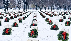 Wreaths Across America (Scott M. Mohn) Tags: honor veterans military celebration minnesota patterns sorrow life gravesite wreaths snow headstones rows thakful december footprints inscription ribbons trees landscape monuments boughs resting respect somber people sonyilca77m2