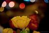 Flowers (pkbhat_20032003) Tags: rose kolkata flowerseller