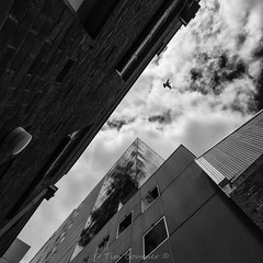 Fly (red snapper 205) Tags: builtenvironment architecture building up blackandwhite bnw bw monochrome contrast clouds sky explore cities