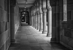 Qld Uni (gnarlydog) Tags: architecture australia buildings column monochrome blackandwhite bw vanishingpoint queensland fzuiko32mmf17 manualfocus vintagelens highcontrast