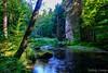 River in rocks (Nelleke C) Tags: 2017 bohemen národníparkčeskéšvýcarsko oosteuropa tsjechië vysokalipa bos holiday landscape landschap river rivier rocks rots steen stone vakantie woodland