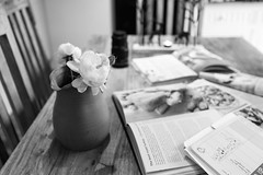 Future Tense (Pittypomm) Tags: 2017project52 week51 future tense futuretense roses books recipe candle table chairs diary planner schedule lens domestic planning magazine book vase jug