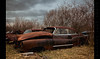 Land Whale (Whitney Lake) Tags: junkyard decay rusty retrowreck classic car abandoned