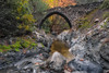 Elia Bridge (Christos Zoumides) Tags: stream cascade flowingwater fallingwater rapids eliabridge mediterranean troodosmountains troodos cyprus river paphos pafos autumn winter water streamflow nature longexposure rocks trail nikon blur lake wbpa merrychristmas nikond750 orange yellow nationalgeographic ngc nikon1424mm