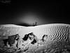 20140414_173642 (zalo_astur) Tags: descanso parada desierto africa animales arena galaxy s3 telefono i9300