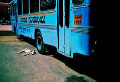 Blue bus (Stephen Dowling) Tags: 35mm film kodakelitechrome100 xpro india bangalore travel cosinacx2 crossprocessed