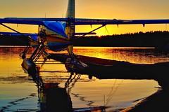 Double Otter Sunset (otterdrivernw) Tags: pnw xf50140 fujixt2 fujix fujifilm lakewashington air kenmore otter dehavilland floatplane seaplane airplane lake sunset